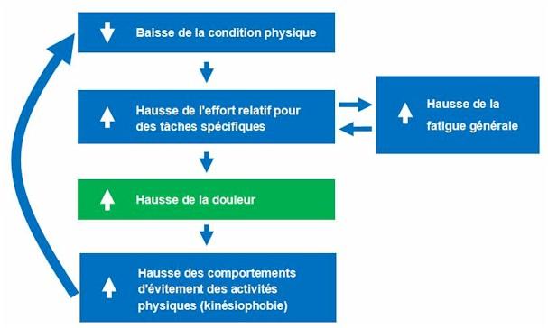 modèle de l'hypokinésie algogène
